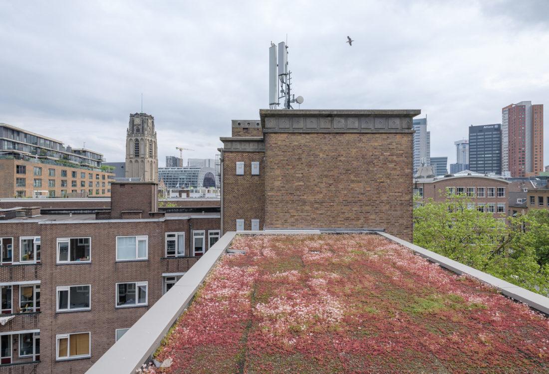 Delftsevaart-appartement-jade-rotterdam10