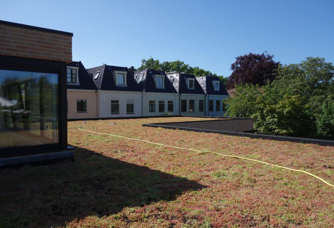Villa verbouwing groendak zonnepanelen